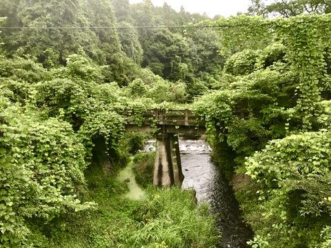 朽ちかけた橋
