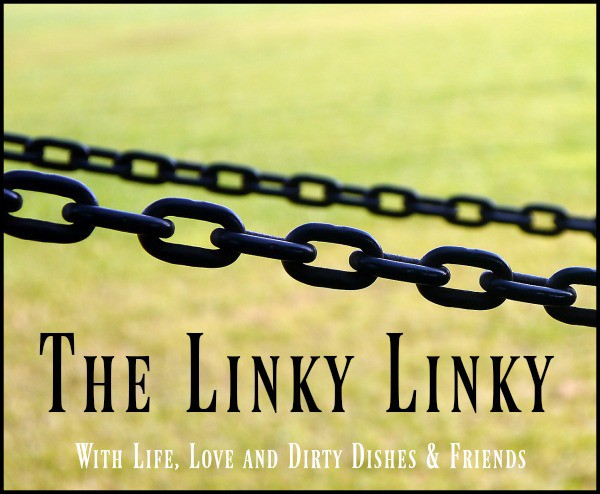 Image of a chain link fence with the text The Linky Linky