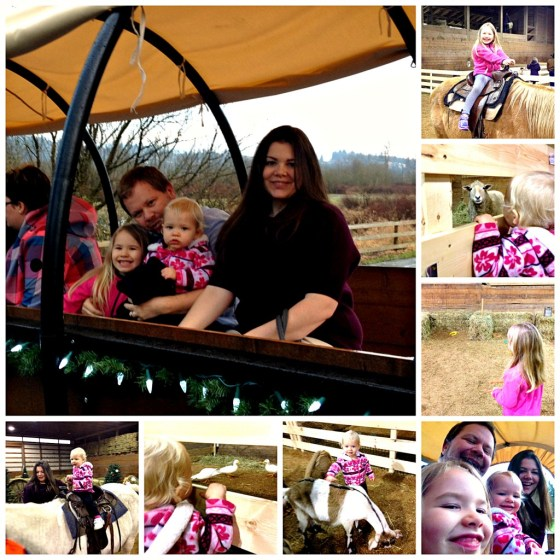 Wagon and Pony Rides at Timberline Ranch
