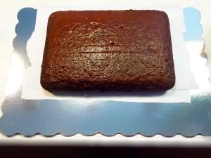 Cake Tutorial: Movie Themed Birthday Cake Step 1