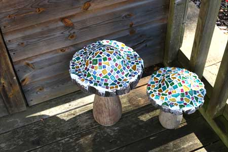 Mosaic Mushroom
