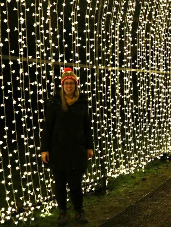 Bedgebury Christmas Lights Trail