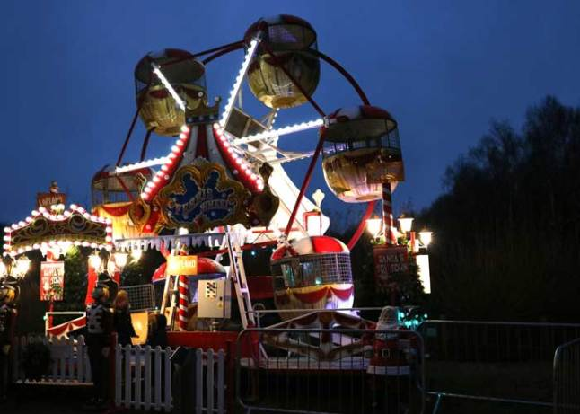 Bedgebury Christmas Lights Trail