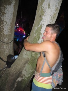 """Caught this """"tree hugger"""" in action...."""