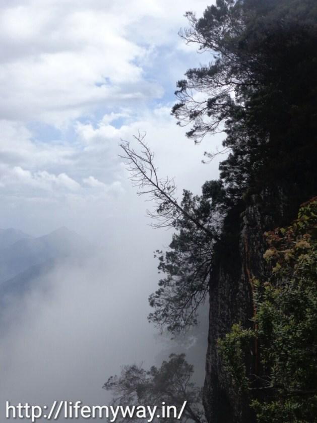 Pillar rocks covered in mist