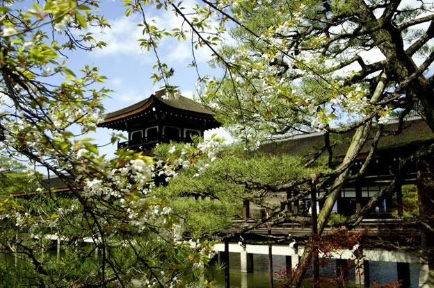 японский сад киото