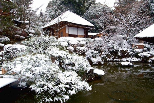 Киото ботанический сад японский сад пагода зима деревья в снегу