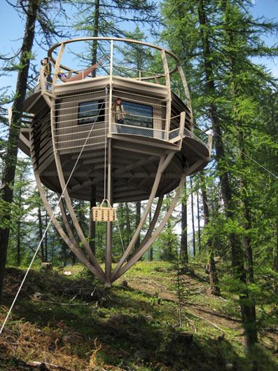 экодом - жизнь в лесу