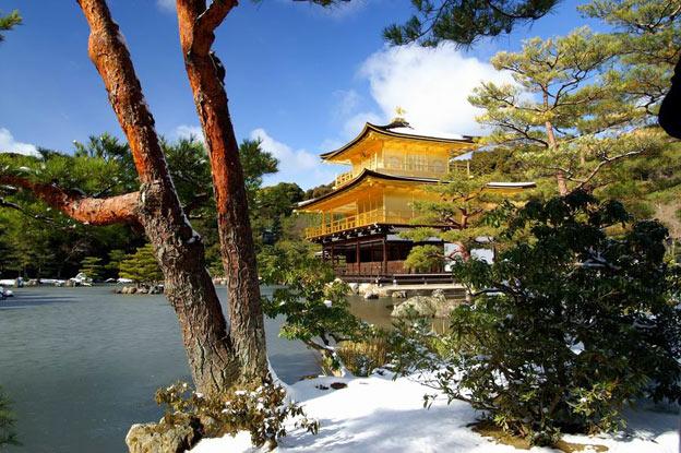 Киото ботанический сад японский сад пагода синтоистский храм