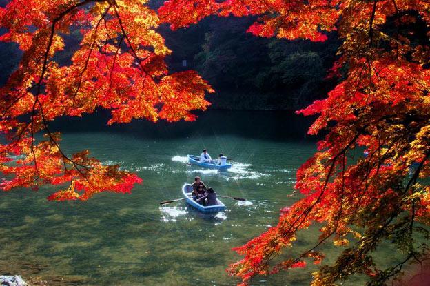 Киото ботанический сад японский сад плавание на лодках