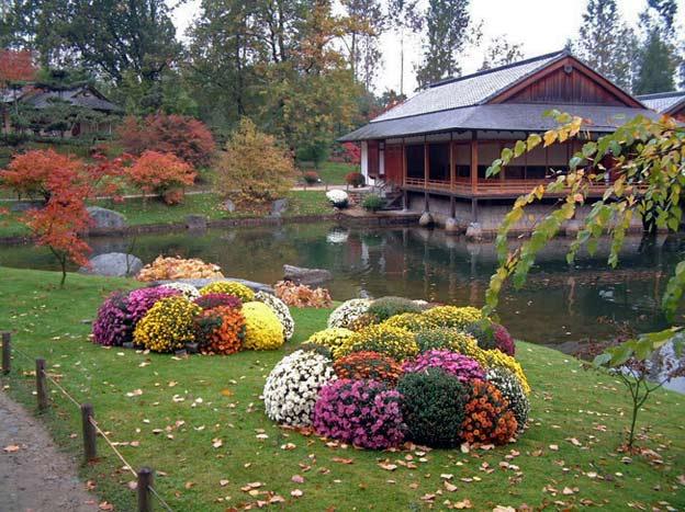 японский сад озеро чайная бельгия хасселт