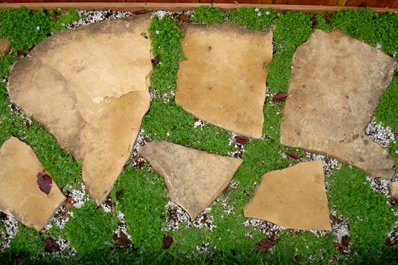 плиты доломита на дорожках засеянная травка