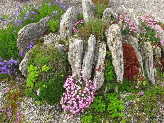 Альпийская горка из вертикально поставленного камня пластуна