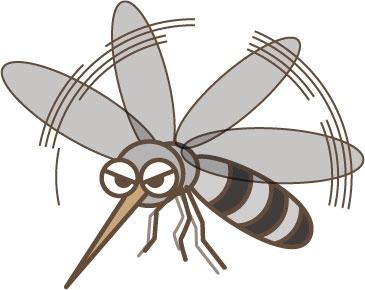 蚊 かゆみ 止める 原因 薬 時間 抑える 蚊に刺されやすい 足首 服の色 蚊に刺されやすい人 足 臭い 対策 常在菌