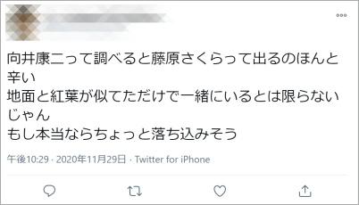 向井藤原匂わせ