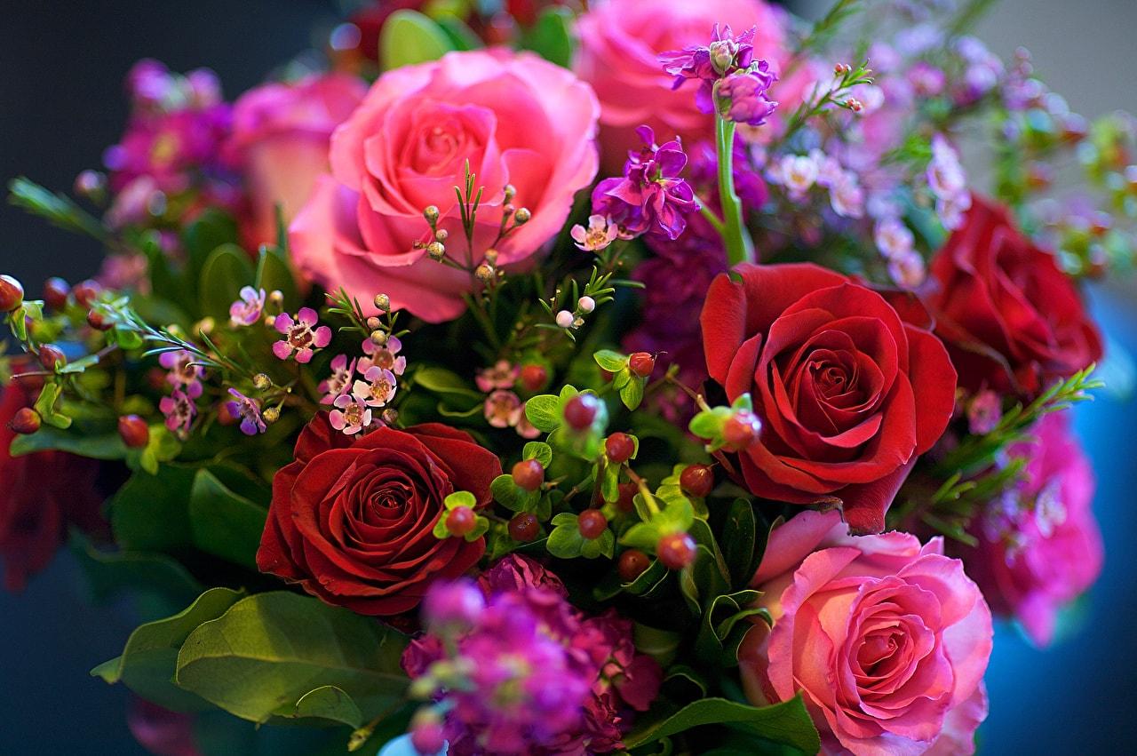 себе шикарные открытки с розами очень красивое решение