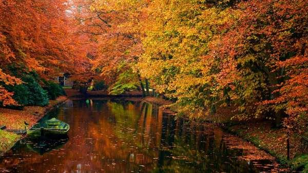 Осень: красивые и большие обои на рабочий стол. Скачайте ...