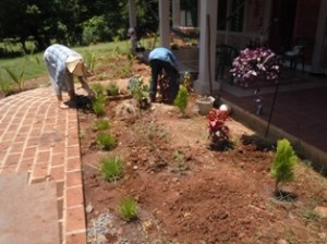 Landscaping  9 12 2012 012