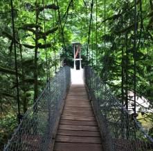 Bright Angel Park bridge
