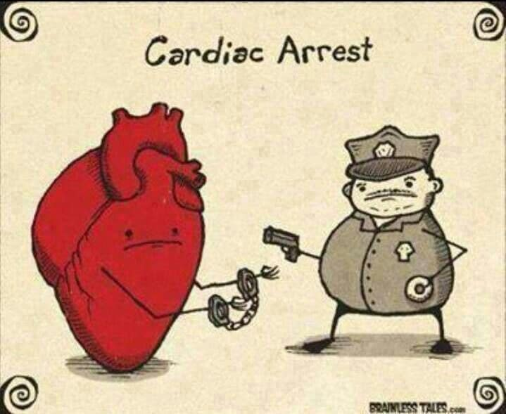 A Day In Cardiac Anesthesia