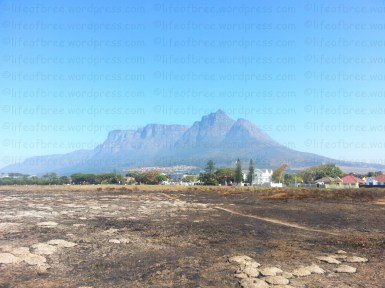 View of Table Mountain from my old neighbourhood, Cape Town, South Africa. A control fire had just happened