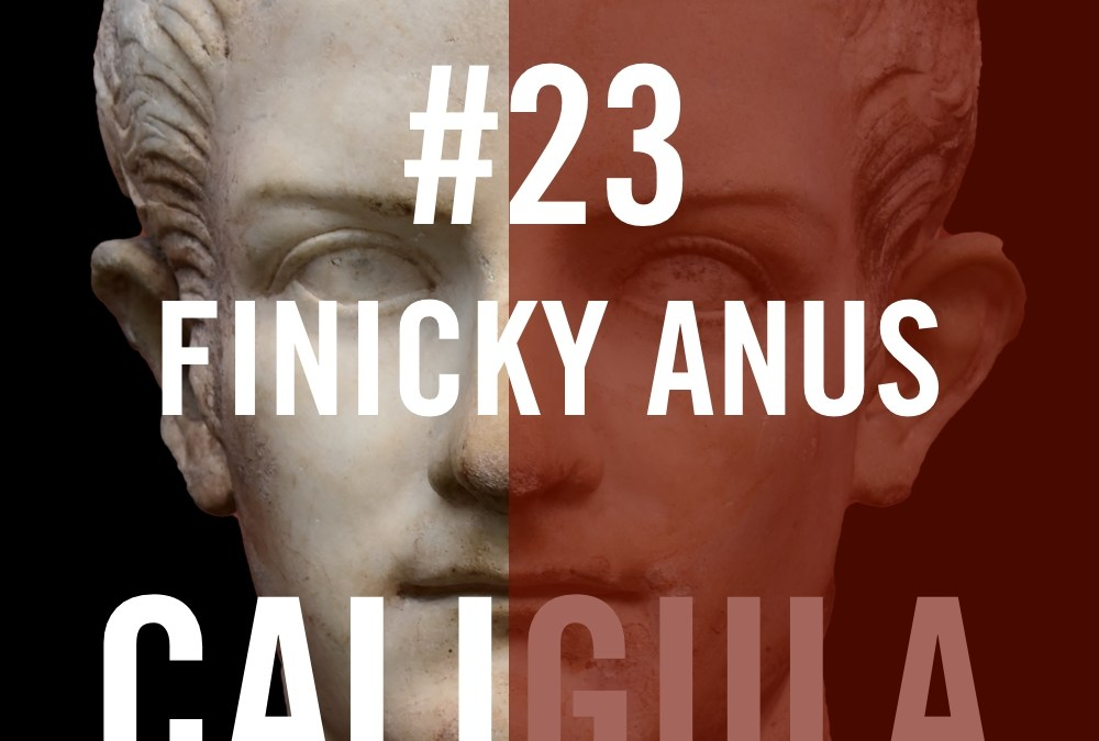 There's nothing worse than having a Finicky Anus aka Lucius Annius Vinicianus. According to Josephus, Vinicianus was one of the main conspirators. As we'll see, Vinicianus was a long history of conspiring against the Julio-Claudians - he was complicit in conspiracies to overthrow Tiberius, Caligula and Claudius. And his sons tried to overthrow Nero. The assassination of Caligula was planned to happen during the celebration of the Palatine games because Caligula had announced that he would be moving to Alexandria - perhaps permanently - the following day.