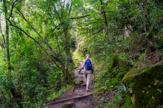 The trail is well maintained, and very easy to follow. It makes its way gently upwards, following the Tugela River and eventually entering the Gorge.