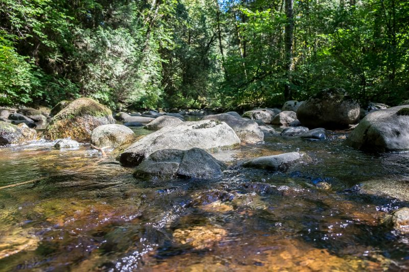 Kanaka Creek and Cliff Falls