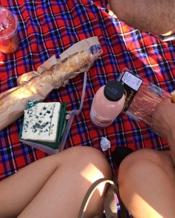 Picnic at the Tuileries Garden