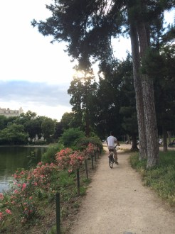 Cycling through the Bois de Boulogne