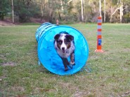 Young Lu (6 months) & our first tunnel.