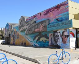 Street art in Venice California