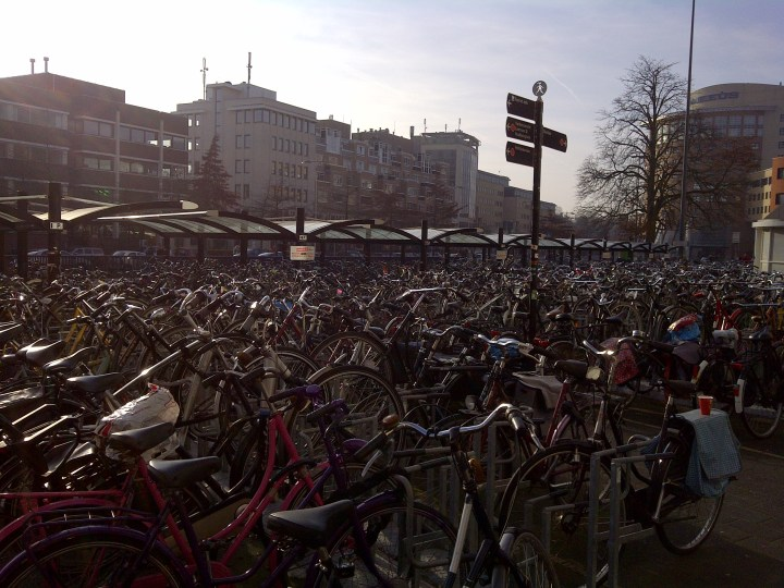 lots-of-bicycles