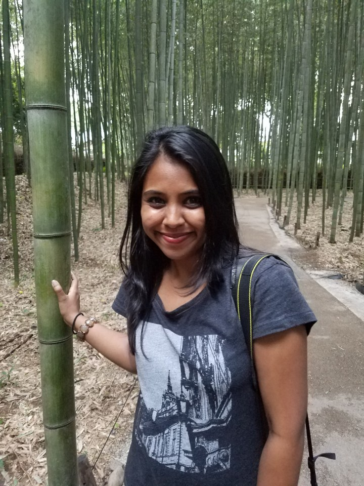 Bamboo Forest 6