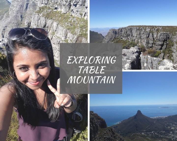 Exploring Table Mountain