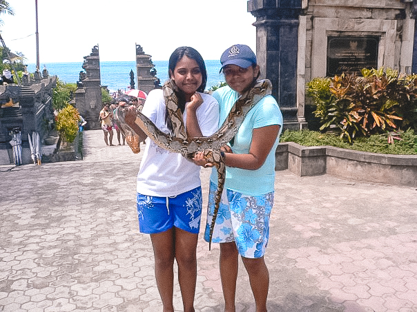 Bali, carrying snakes