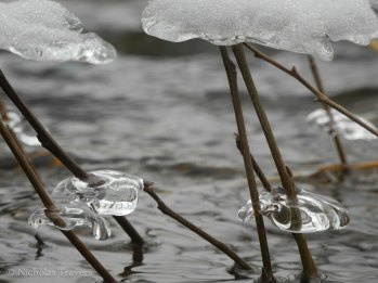 suspended ice lens #1