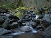 such mossy boulder's by the stream here in Oregon