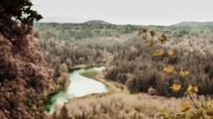 Sandy River Fall
