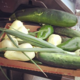 A bountiful harvest: peppers, pickles, cucumbers, onions and zucchini!