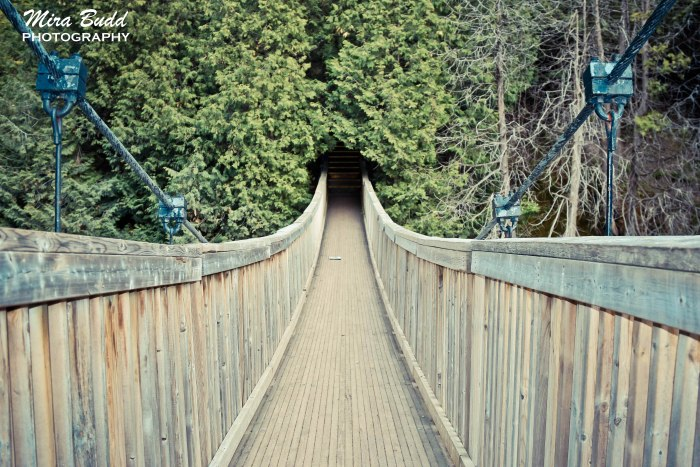 Swing Bridge in Ontario, Caledon Conservation Area, Things to see in Ontario, Hiking Trails in Ontario,