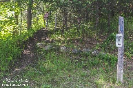 Hiking Trails in Ontario, Top Hiking Trails, Millcroft Inn Trail,