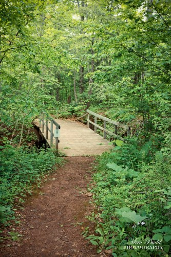 Hiking Trails in Ontario, Conservation Areas in Ontario, Terra Cotta Conservation Area,