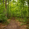 Beautiful Places in Ontario, Hiking Trail in Ontario, things to see in Caledon,