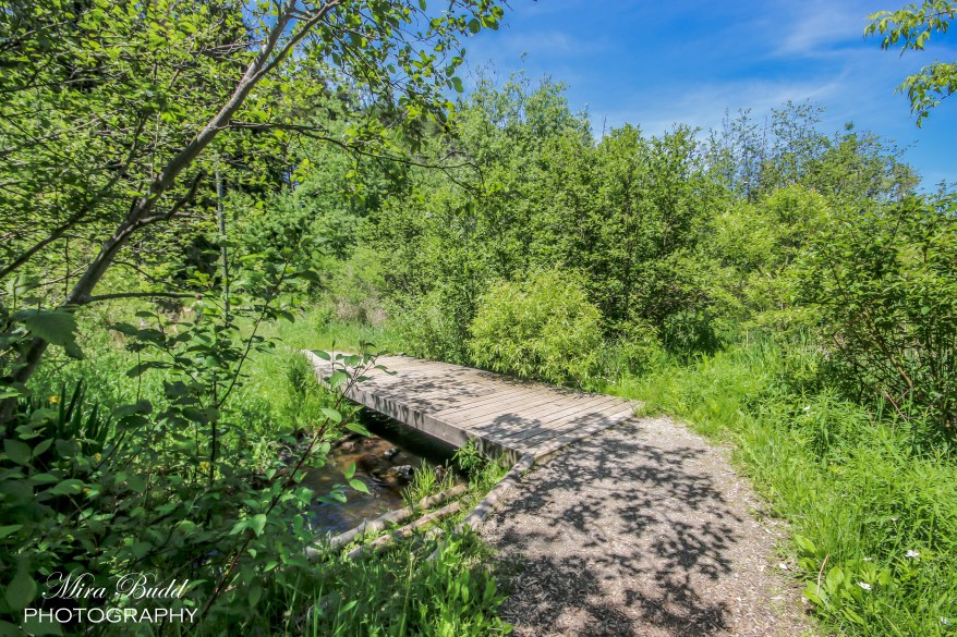 Beautiful Places in Ontario, Hiking Trails in Ontario,