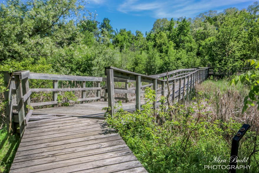 Hiking Trails in Caledon, Things to See in Ontario,