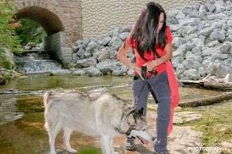 Fallbrook Falls, Waterfalls in Ontario, Beautiful Waterfalls In Ontario, Hiking Trails in Ontario, Day Trips Ontario, Best Day Trips Ontario, Hiking with Your Dog in Ontario,