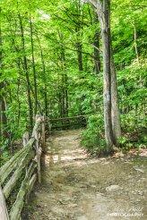 Spencer Gorge, Hiking Trails Ontario