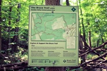 The Bruce Trail Map Sherman Falls