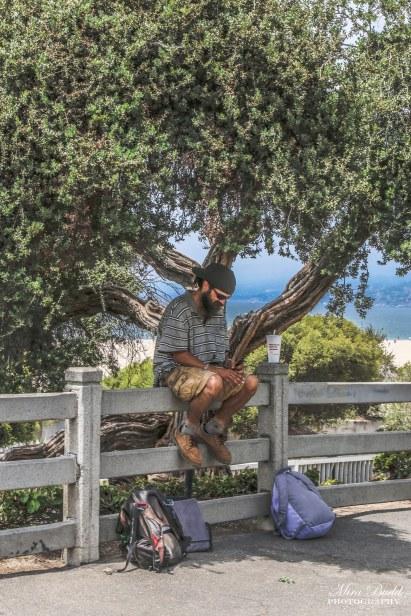 Things to See in Santa Monica, Santa Monica Pier, Attractions Santa Monica, Places to Visit in Los Angeles, Santa Monica Beach,